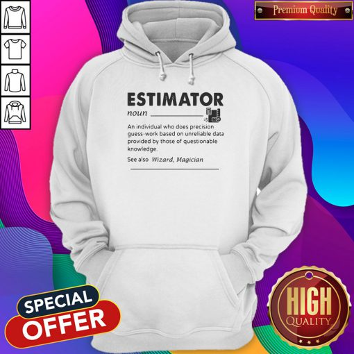 Estimator An Individual Who Does Precision Hoodie