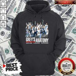 Grey's Anatomy 2005 2020 16 Seasons 342 Episodes Hoodie