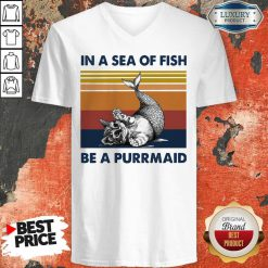 Cat In A Sea Of Fish Be A Purrmaid Vintage V-neck