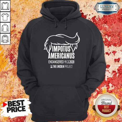 Impetus Americanus The Lincoln Project Hoodie