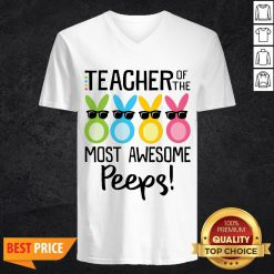 Rabbits Teacher Of The Most Awesome Peeps V-neckRabbits Teacher Of The Most Awesome Peeps V-neck