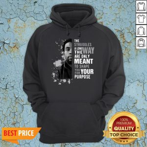Chadwick Boseman The Struggles Along The Way Are Only Meant To Shape You For Your Purpose Hoodie