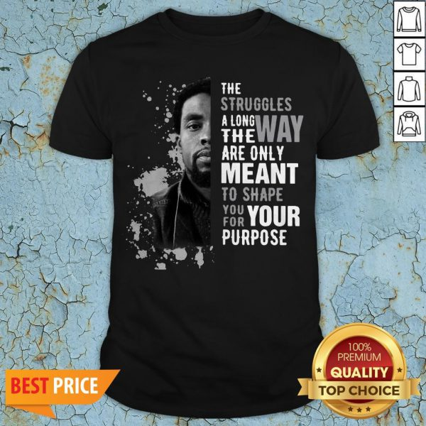 Chadwick Boseman The Struggles Along The Way Are Only Meant To Shape You For Your Purpose Shirt