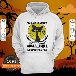 Halloween Black Cat And Pumpkin Walk Away I Have Anger Issues And A Serious Dislike For Stupid People Hoodie