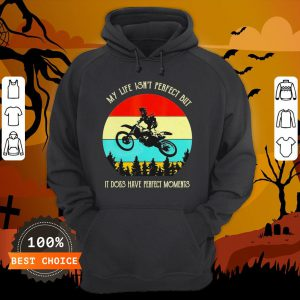 My Life Isn't Perfect But It Does Have Perfect Moments Vintage Hoodie