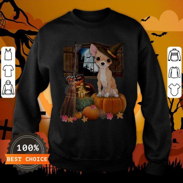 Nice Chihuahua Witch Halloween SweatshirtNice Chihuahua Witch Halloween Sweatshirt