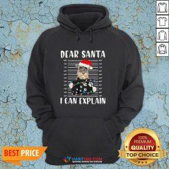 Cute Schnauzer Dear Santa I Can Explain Christmas Sweater Hoodie - Design By Habittees.com