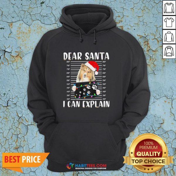 Hot Shetland Sheepdog Dear Santa I Can Explain Christmas Sweater Hoodie - Design By Habittees.com