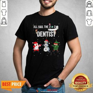 Nice All Hail The 2020 Dentist Dabbing Santa Elf Xmas Toilet Roll Shirt