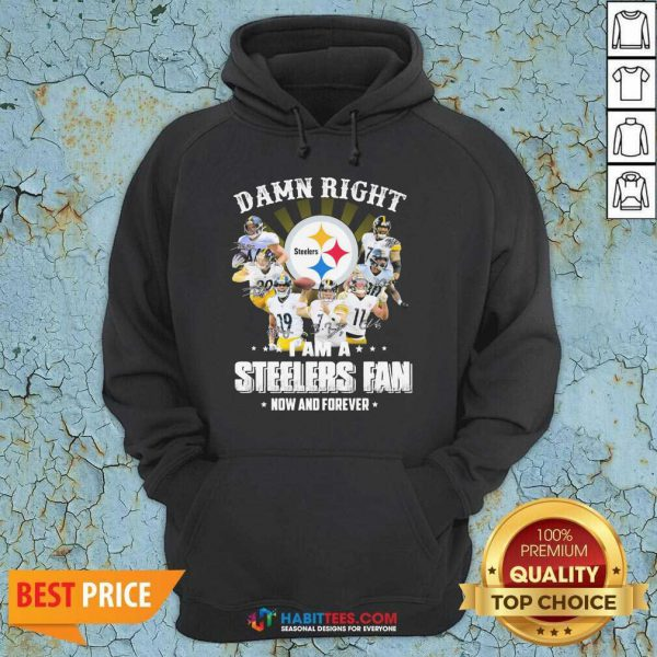 So Damn Right I Am A Pittsburgh Steelers Fan Now And Forever Signature Hoodie