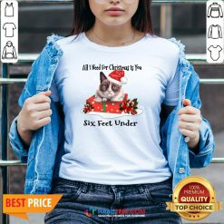 Super Cat All I Need For Christmas Is You Six Feet Under V-neck - Design By Habittees.com