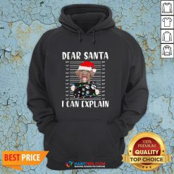 Top Shetland Sheepdog Dear Santa I Can Explain Christmas Sweater Hoodie - Design By Habittees.com