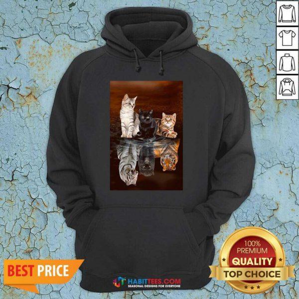 Top Three Cat Tiger Reflections 5d Diamond Diy Hoodie