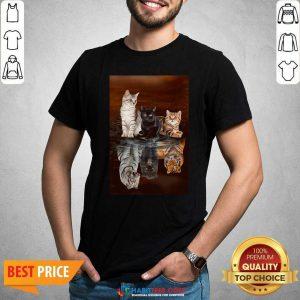 Top Three Cat Tiger Reflections 5d Diamond Diy Shirt