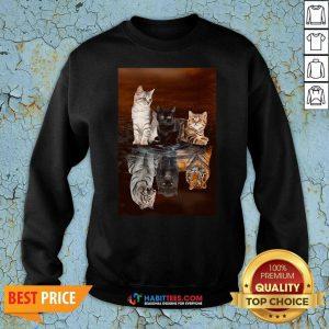 Top Three Cat Tiger Reflections 5d Diamond Diy Sweatshirt