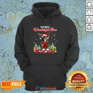 Tibetan Terrier The Most Wonderful Time Of The Year Ugly Christmas Hoodie- Design by Habittees.com