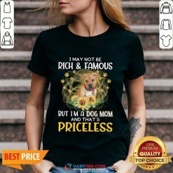 Hot Pitbull I May Not be Rich And Famous But I'm A Dog Mom And That's Priceless V-neck